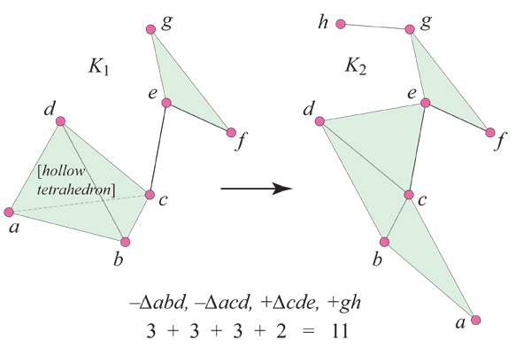 SimplicialComplex