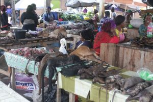 Exotic animals for sale at a wet market in Gabon