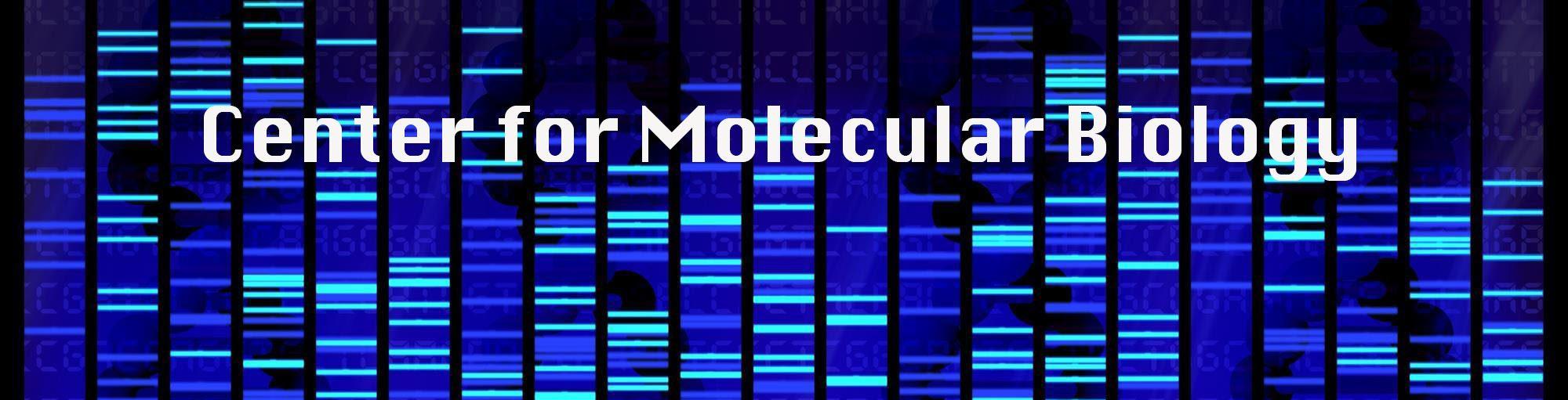 The Center for Molecular Biology