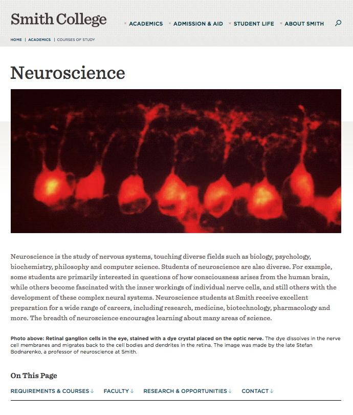 Neuroscience Program Supplemental Website