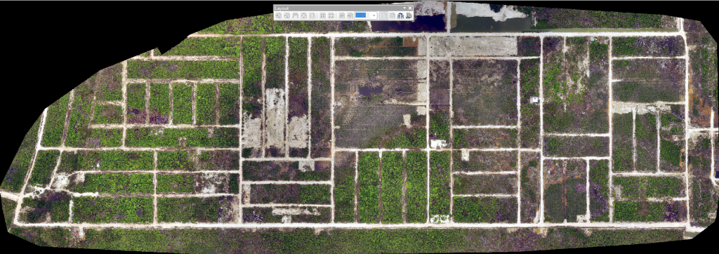 Drone imagery of the nearly abandoned Belizean Estates in the mangrove swamps of Ambergris Caye, Belize.