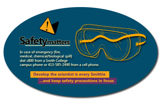 safety-card1
